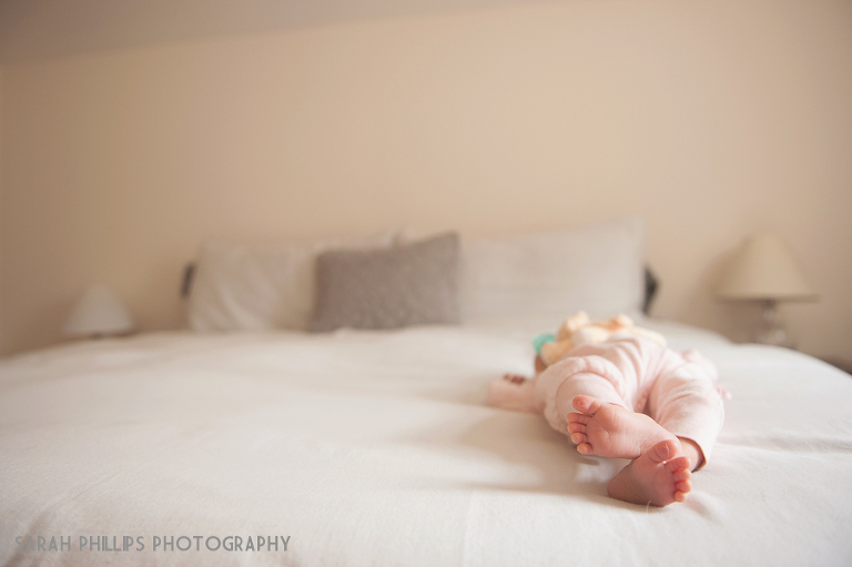 Newburyport Newborn Portraits